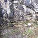Il sentiero verso l'Alpe Cher