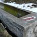 Kuhtränke hinter der Alpe - gerade noch gefroren.