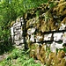 Ruine Altlägeren