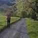 Frühlingsidylle bei Büel