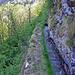 Im steilen Bergwald hat es einige ausgesetzte Stellen.