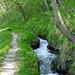 Die Laldneri ist praktisch auf der ganzen Länge naturbelassen und führt in der Regel viel Wasser.