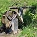 Die Gorperi erreichen wir heute kurz vor der Lischa. Das Wasserrad mit Merkhammer meldet zweierlei: a) die Gorperi führt Wasser b) sie führt genug Wasser.