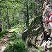 Die Gorperi ist an vielen Stellen Steinschlag gefährdet.