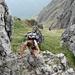 Griff zum Drahtseil: Kurze felsige Passage auf den letzten Metern am Gipfelkopf des Monte Grona