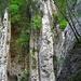 oberhalb der Staße von Moutier zum PP. 2 Kletterer im herrlichen Pfeiler.