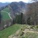 Au-dessus de Tierhag, dernière montée avant le Schnebelhorn