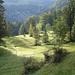 Halbwegs zwischen Brülisau und Pfannstil den ersten Anstieg durchs Moor (Rossmad), beinahe mystische Stimmung am Morgen