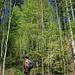durch schönen Wald zum Kieneckspitz