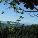 Blick vom Schattberggrat zu den Berner Alpen