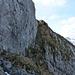 Grasband mit guten Wegspuren, welche zum Gipfel des Plattenberg führen
