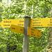 Hier entstand am 3. Apri 2009 die Idee der heutigen Wanderung
