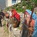 Fleischtransport - so werden die Büffelhälften z.T. 5 Tage lang ins Everest Base Camp getragen - inklusive Fliegen