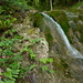 Farn und Wasserfall