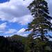 Schlösshöchi – malerisch, unter wolkigem Himmel