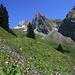 Blumiger Rückblick zum (von dieser Perspektive) eindrücklichen Rossalpelispitz und dem Brünnelistock