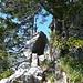 Diesen Felsdurchschlupf (Gasse) muss man im Abstieg vom Haggenspitz finden
