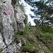 Auch am Chalberstöckli wartet viel grasdurchsetzter Fels