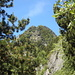 Zwischen dem Bergwald sieht man den Sassariente näher kommen