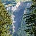 Der Mettlenbach..deutlich zu sehen die [http://www.hikr.org/gallery/photo495137.html?post_id=35400#1 helle Abbruchstelle]....