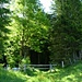 Wiesenweg / Waldeintritt nach Ronenboden