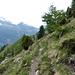 Prossimi all' Alpe