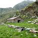 Alp de Calvaresc desora 2131mt