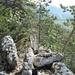 die Gratspur führt mal über Fels, mal an senkrechten Wänden vorbei
