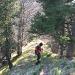 Der erste einfachere Teil des Aufstieges, bis zur Spitz 1410m.