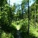 sehr schönes Wanderweglein