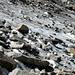 Galengletscher-Überreste