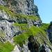 Unten das erste Band mit der schweren Stelle. Blau markiert die Kletterstelle links von der Höhle mit dem lll Grad. Alternativ weiter auf dem Band queren, und weiter hinten auf das obere Band stossen
