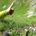 Das lange sehr abschüssige steile Grasband T6
