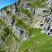 Der schmale sehr abschüssige Weg (T6-) zum Steinmänchen. Danach hoch über den guten Kalk und Gras bis zur Stahlseil-gesicherte Passage (Blauer Kreis)