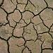Selbst im feuchten Island gibt's Trockenheit!