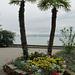 Palmen mit Segelboot - ein bisschen Kitsch muss sein