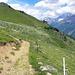 Lötschetaler Höhenweg Richtung Lauchernalp