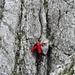 Wandfigur: Dank seiner roten Kleidung kann mein Tourenpartner auch im Nebel- und Felsgrau der Kreuzberge nicht verloren gehen...