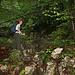 der Aufstieg führt nach dem Gehege durch dichten Wald