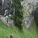 kurz vor Erreichen des Sattels quert man steile Wiesen