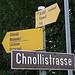 ..wer weiss etwas über den Flurnamengehalt....von Chnolli