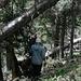 """Abstieg vom Precipice Peak - Unterwegs im """"Urwald""""."""