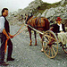Mit dem Gemmi-Wägeli fuhren Touristen um 1900 über den Gemmipass