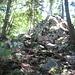 Steiniger und stotziger Weg auf den Vitznauerstock