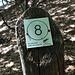 Sentiero numero 8 da Bellavista al Generoso