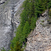 Ein geologischer Leckerbissen! (Foto: [U Alpin_Rise])
