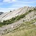 Belle placche nelle vicinanze dell'Alpe di Ribia
