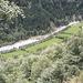 Il Ribo scorre nella Valle di Vergelletto affiancato da magnifici prati