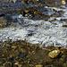 Eiskalt ist es am Morgen im Schönverwall