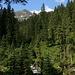 beim Aufstieg zur Bamberger Hütte